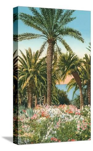 Palm Trees, Flowers and Agave--Stretched Canvas Print