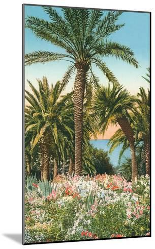 Palm Trees, Flowers and Agave--Mounted Art Print
