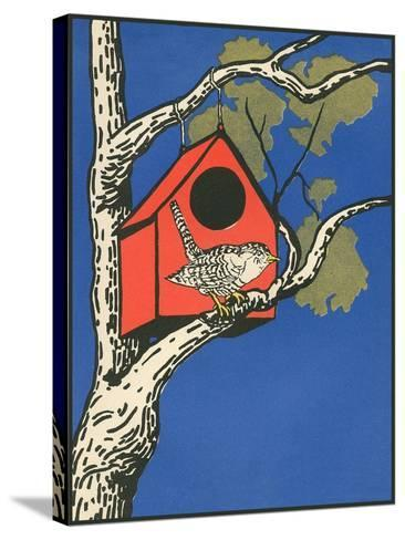 Bird Outside Birdhouse--Stretched Canvas Print