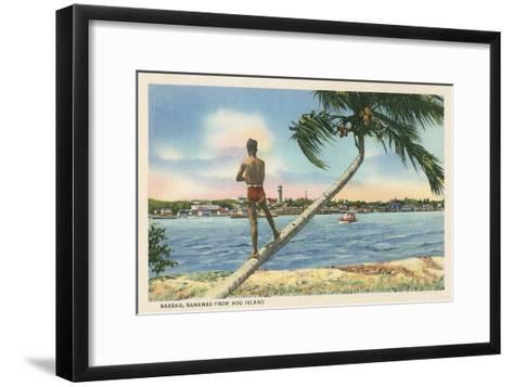 Nassau, Bahamas, Hog Island--Framed Art Print