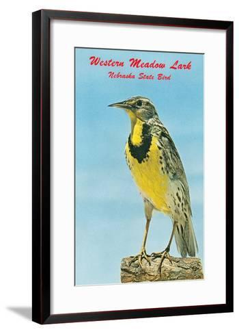 Western Meadowlark--Framed Art Print