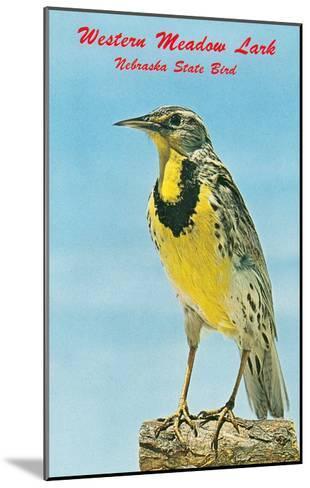 Western Meadowlark--Mounted Art Print