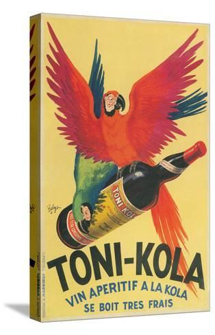 Macaws with Bottle of Kola Liqueur--Stretched Canvas Print
