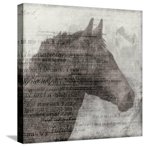 Equestrian Story 1-Ken Roko-Stretched Canvas Print