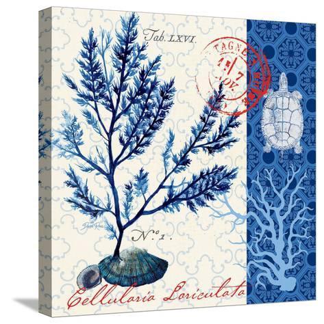 Oceanic Botanical-Devon Ross-Stretched Canvas Print