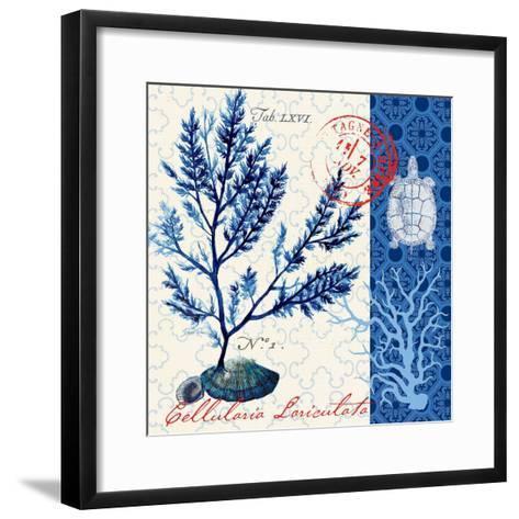 Oceanic Botanical-Devon Ross-Framed Art Print