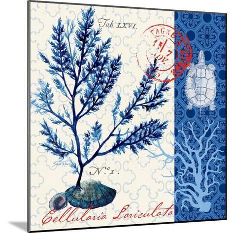 Oceanic Botanical-Devon Ross-Mounted Art Print