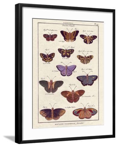 Histoire Naturelle 2-Terrence Wesley-Framed Art Print