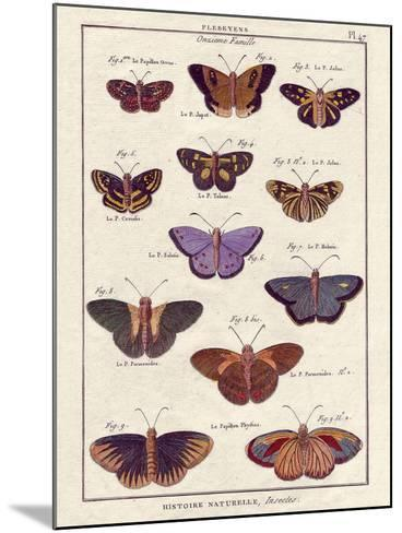 Histoire Naturelle 2-Terrence Wesley-Mounted Art Print