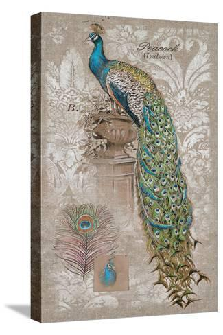 Peacock on Linen 2-Chad Barrett-Stretched Canvas Print