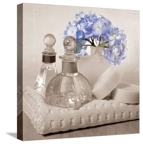 Hydrangea and Towel-Julie Greenwood-Stretched Canvas Print