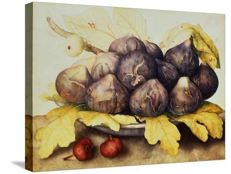 Still Life with Bowl of Figs, c.1650-Giovanna Garzoni-Stretched Canvas Print