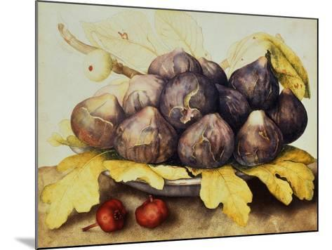 Still Life with Bowl of Figs, c.1650-Giovanna Garzoni-Mounted Giclee Print