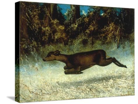 Jumping Deer-Gustave Courbet-Stretched Canvas Print