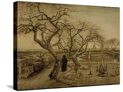 Winter Garden, March 1884-Vincent van Gogh-Stretched Canvas Print