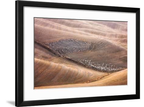 288 And Shepherd-Marcin Sobas-Framed Art Print