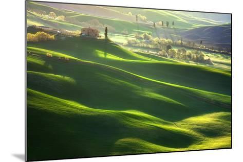 Morning Harmony-Marcin Sobas-Mounted Photographic Print