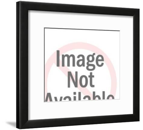 Boy taking photograph-Pop Ink - CSA Images-Framed Art Print