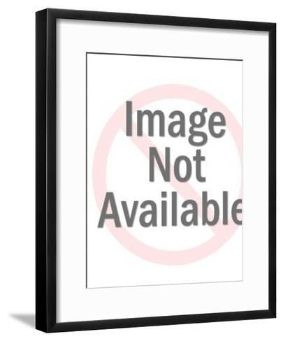 Businessman Speaking-Pop Ink - CSA Images-Framed Art Print