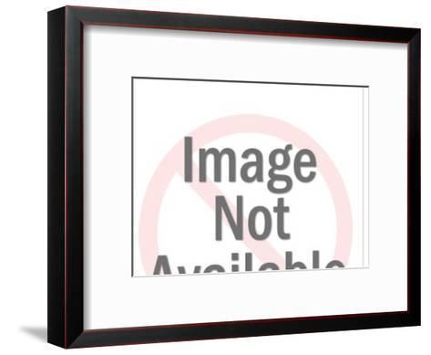 Meat pattern-Pop Ink - CSA Images-Framed Art Print