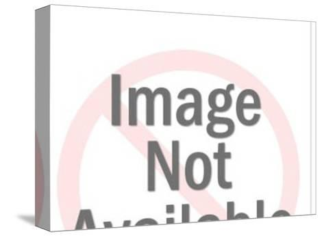 Futureland-Pop Ink - CSA Images-Stretched Canvas Print