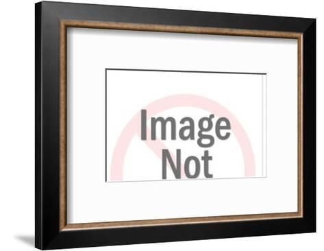 Genie's lamp-Pop Ink - CSA Images-Framed Art Print