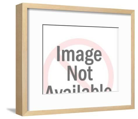 Baseball-Pop Ink - CSA Images-Framed Art Print