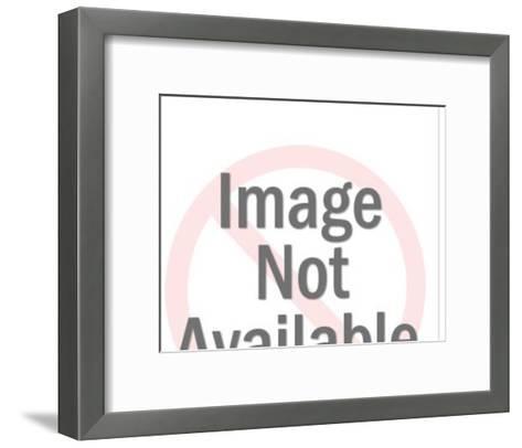 Cosmetologist-Pop Ink - CSA Images-Framed Art Print