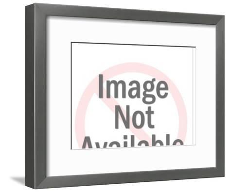Suspension Bridge-Pop Ink - CSA Images-Framed Art Print