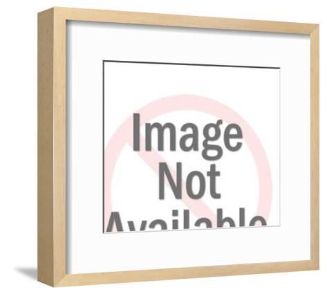 Chinese Sailboat-Pop Ink - CSA Images-Framed Art Print