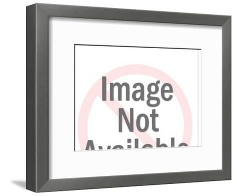 Pg sliced in half-Pop Ink - CSA Images-Framed Art Print