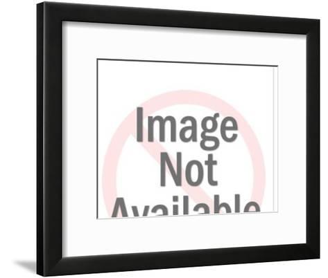 Boston Terrier-Pop Ink - CSA Images-Framed Art Print