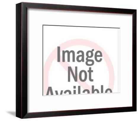 Large Dog-Pop Ink - CSA Images-Framed Art Print