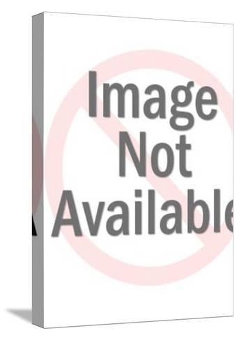 CSA Spark Plug-Pop Ink - CSA Images-Stretched Canvas Print