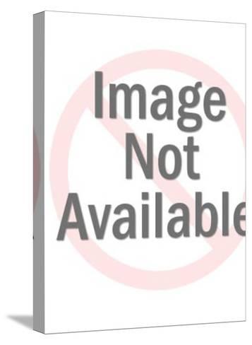 Flea No More-Pop Ink - CSA Images-Stretched Canvas Print