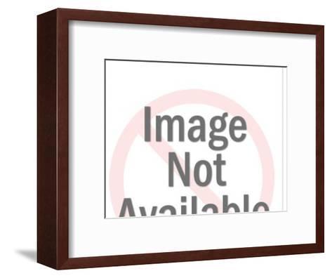 Beaver-Pop Ink - CSA Images-Framed Art Print