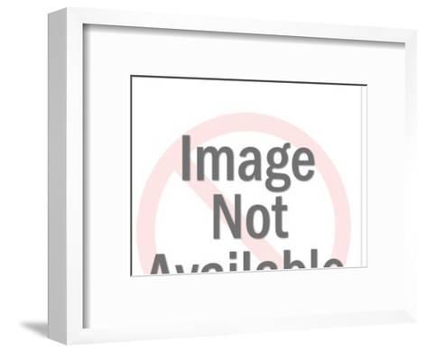 Beaver Holding Log-Pop Ink - CSA Images-Framed Art Print