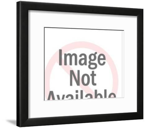 Smiling Whale-Pop Ink - CSA Images-Framed Art Print