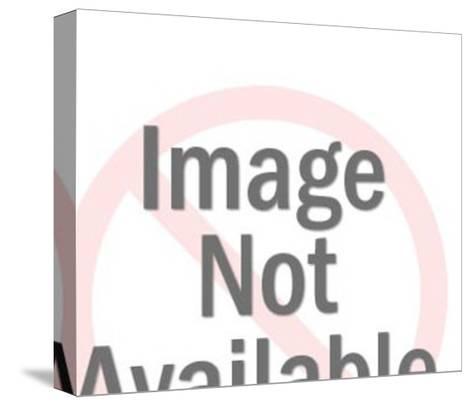 Businessmen Inside File Drawer-Pop Ink - CSA Images-Stretched Canvas Print
