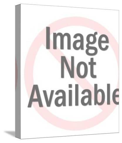 Portrait of Mustache Man EAP-Pop Ink - CSA Images-Stretched Canvas Print