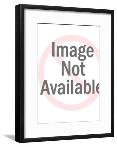 Bee on Flower Wallpaper-Pop Ink - CSA Images-Framed Art Print