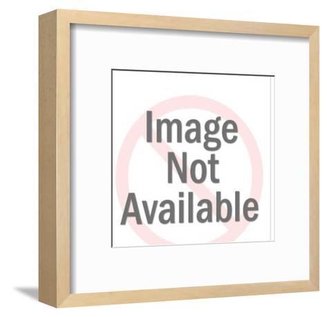Rat on Orange Background-Pop Ink - CSA Images-Framed Art Print