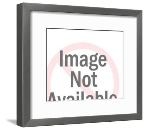 Boston Terrier Dog-Pop Ink - CSA Images-Framed Art Print