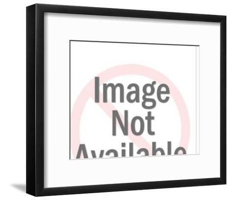 Woman Taking Picture With Camera-Pop Ink - CSA Images-Framed Art Print