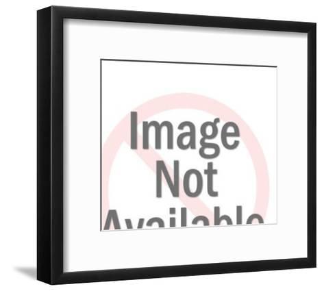 Robin Bird-Pop Ink - CSA Images-Framed Art Print