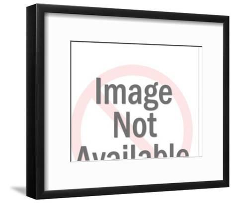 Large Grey House-Pop Ink - CSA Images-Framed Art Print
