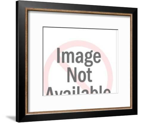 Various Birds in Squares-Pop Ink - CSA Images-Framed Art Print