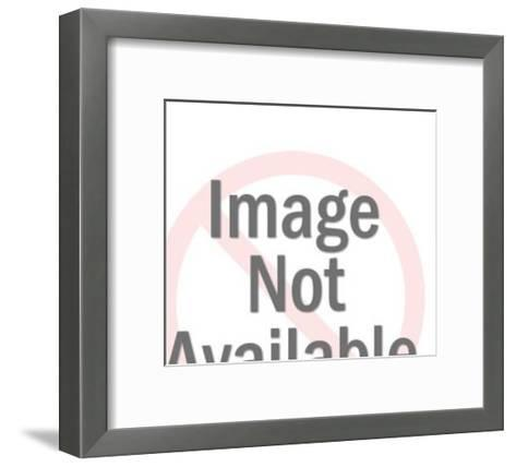 Man Using Video Camera-Pop Ink - CSA Images-Framed Art Print