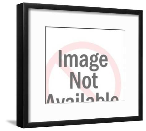 Lion and Man-Pop Ink - CSA Images-Framed Art Print
