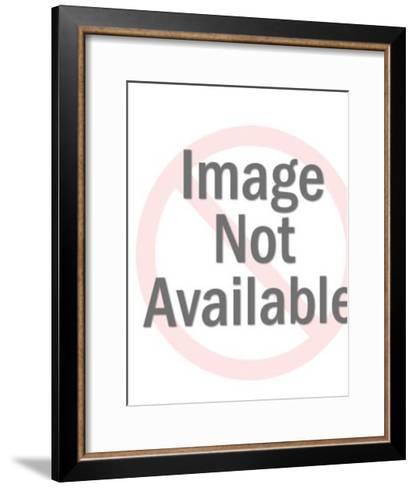 Seagull Near Dock-Pop Ink - CSA Images-Framed Art Print